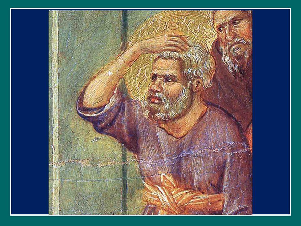 Nel Vangelo, anche Gesù ci parla della santità e ci spiega la nuova legge, la sua.