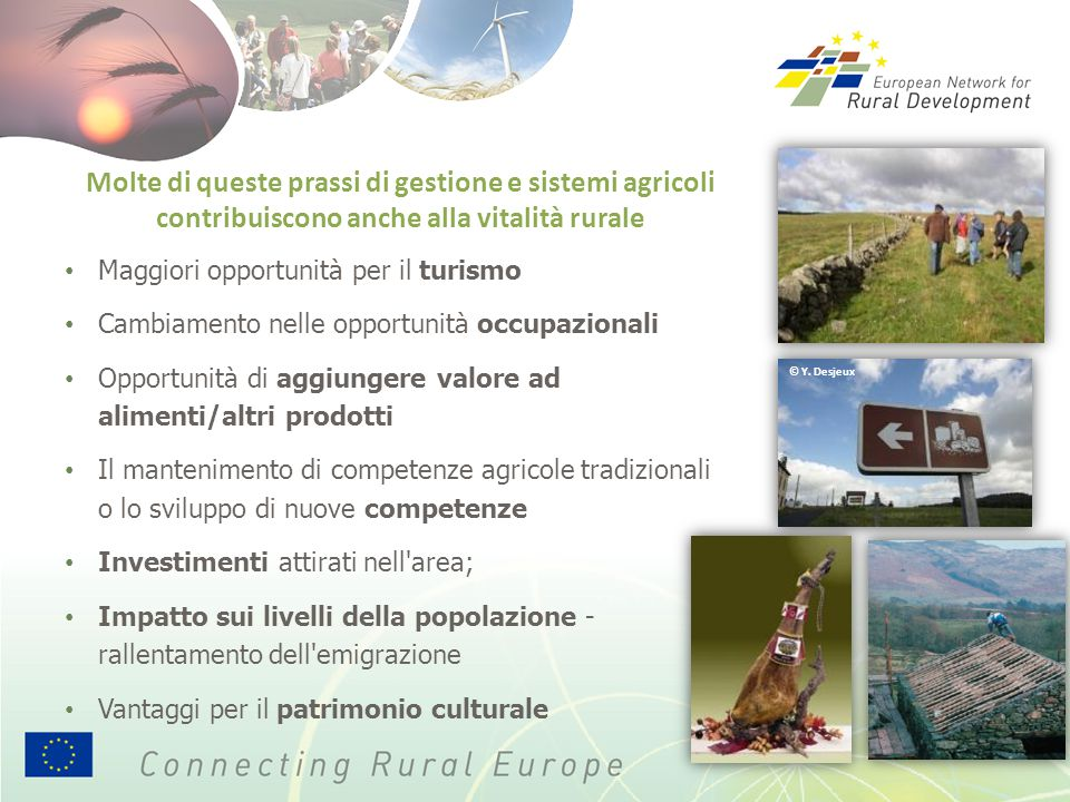 Molte di queste prassi di gestione e sistemi agricoli contribuiscono anche alla vitalità rurale Maggiori opportunità per il turismo Cambiamento nelle
