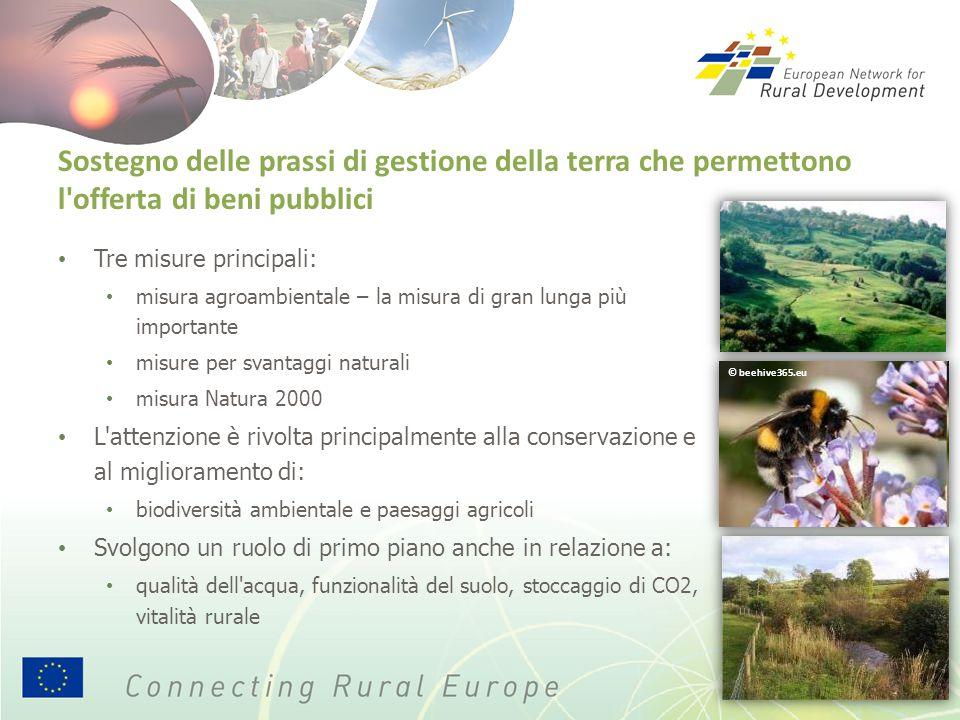 Sostegno delle prassi di gestione della terra che permettono l'offerta di beni pubblici Tre misure principali: misura agroambientale – la misura di gr