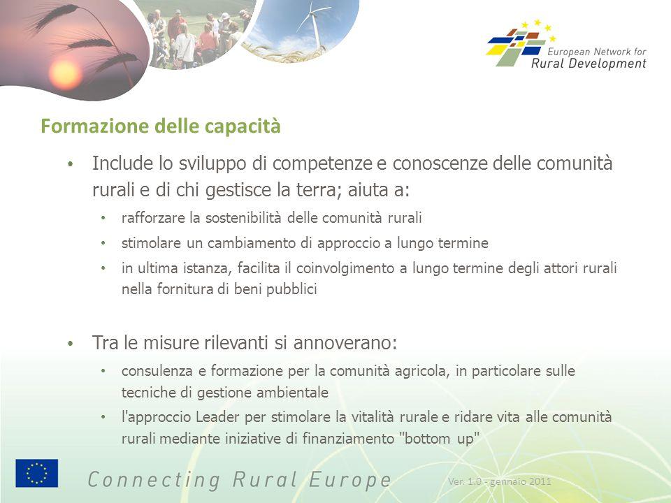 Formazione delle capacità Include lo sviluppo di competenze e conoscenze delle comunità rurali e di chi gestisce la terra; aiuta a: rafforzare la sost