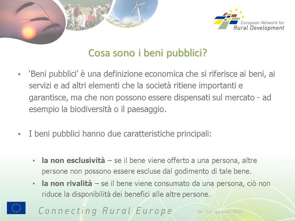Cosa sono i beni pubblici? 'Beni pubblici' è una definizione economica che si riferisce ai beni, ai servizi e ad altri elementi che la società ritiene