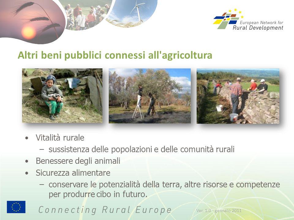 Altri beni pubblici connessi all'agricoltura Vitalità rurale –sussistenza delle popolazioni e delle comunità rurali Benessere degli animali Sicurezza