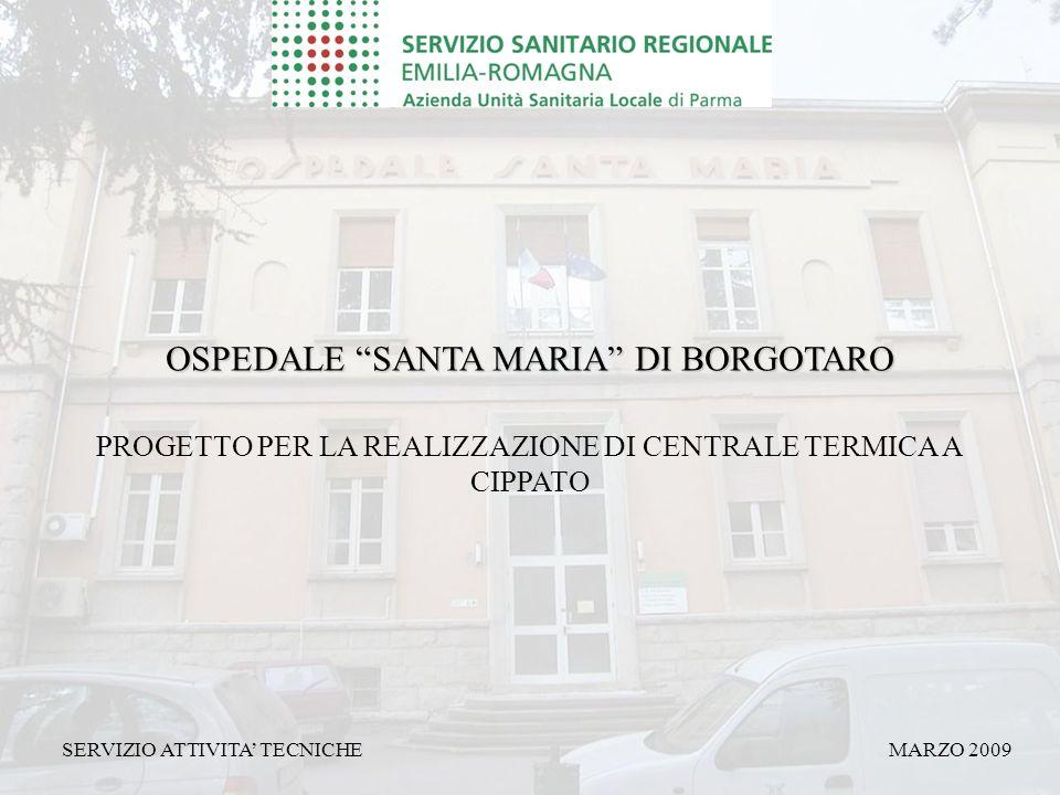 PROGETTO PER LA REALIZZAZIONE DI CENTRALE TERMICA A CIPPATO OSPEDALE SANTA MARIA DI BORGOTARO MARZO 2009SERVIZIO ATTIVITA' TECNICHE