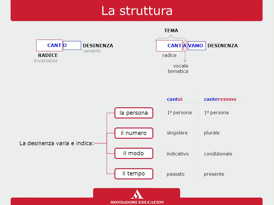 La struttura RADICE invariabile DESINENZA variabile CANT O radice DESINENZA CANT A VAMO vocale tematica TEMA La desinenza varia e indica: la personail