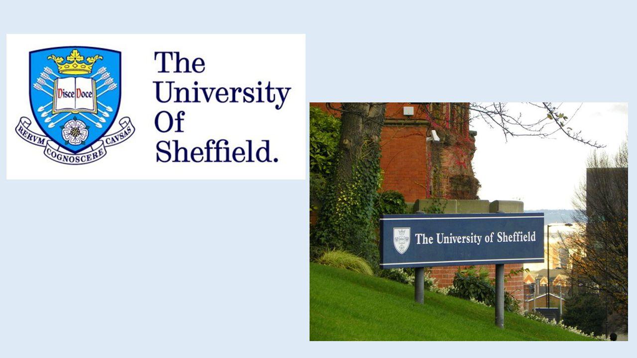 Dove si trova Sheffield.
