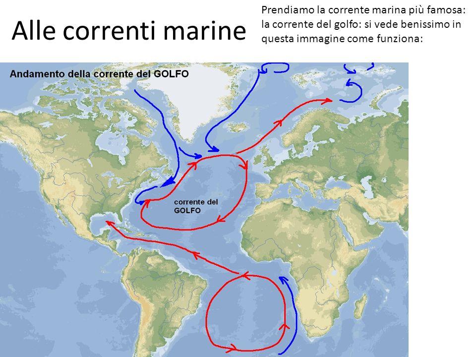 Alle correnti marine Prendiamo la corrente marina più famosa: la corrente del golfo: si vede benissimo in questa immagine come funziona: