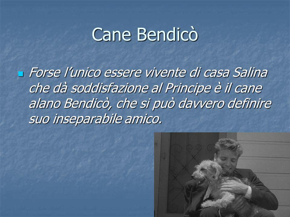 Cane Bendicò Forse l'unico essere vivente di casa Salina che dà soddisfazione al Principe è il cane alano Bendicò, che si può davvero definire suo ins