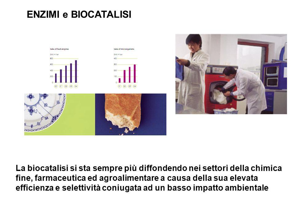 ENZIMI e BIOCATALISI La biocatalisi si sta sempre più diffondendo nei settori della chimica fine, farmaceutica ed agroalimentare a causa della sua ele