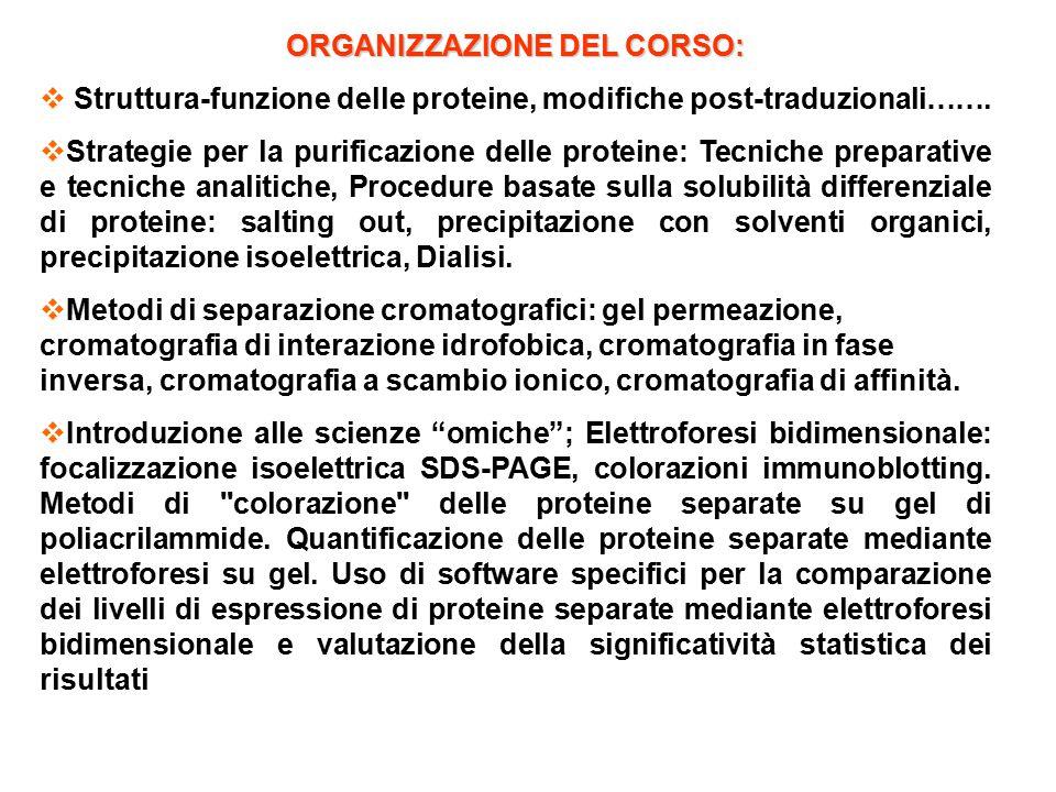 ORGANIZZAZIONE DEL CORSO:  Struttura-funzione delle proteine, modifiche post-traduzionali…….  Strategie per la purificazione delle proteine: Tecnich