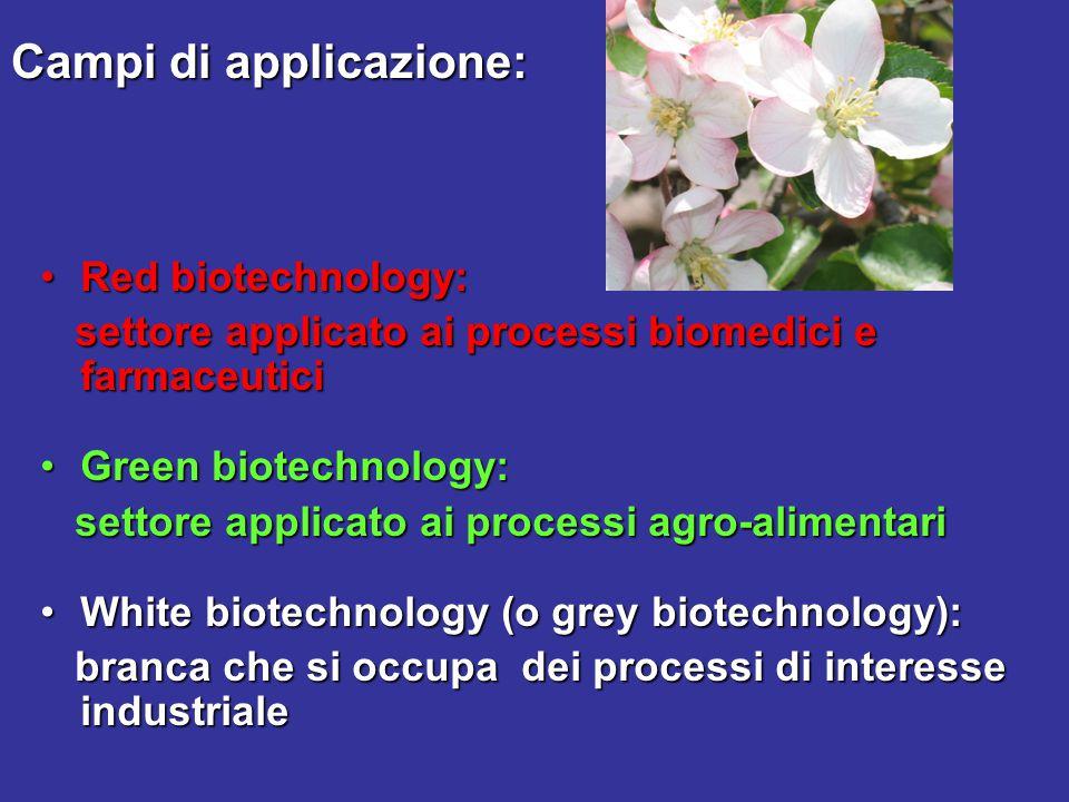 Campi di applicazione: Red biotechnology:Red biotechnology: settore applicato ai processi biomedici e farmaceutici settore applicato ai processi biome
