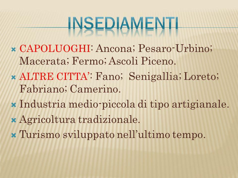  CAPOLUOGHI : Ancona; Pesaro-Urbino; Macerata; Fermo; Ascoli Piceno.  ALTRE CITTA ': Fano; Senigallia; Loreto; Fabriano; Camerino.  Industria medio