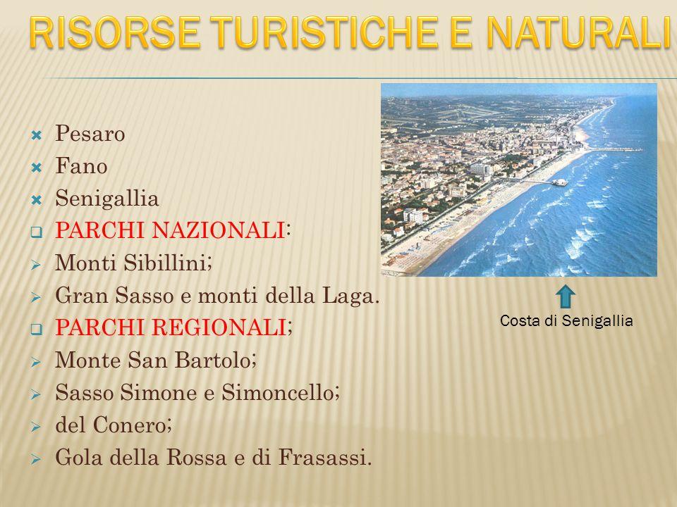  Pesaro  Fano  Senigallia  PARCHI NAZIONALI:  Monti Sibillini;  Gran Sasso e monti della Laga.  PARCHI REGIONALI;  Monte San Bartolo;  Sasso