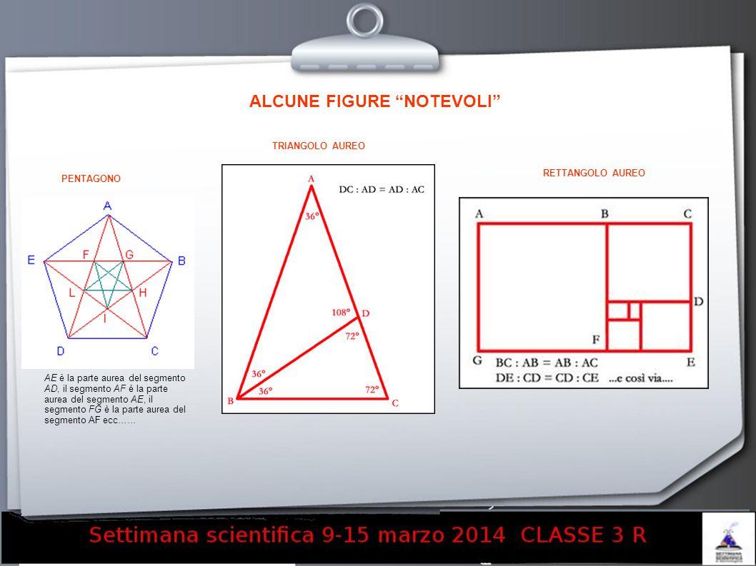 AE è la parte aurea del segmento AD, il segmento AF è la parte aurea del segmento AE, il segmento FG è la parte aurea del segmento AF ecc…… ALCUNE FIG