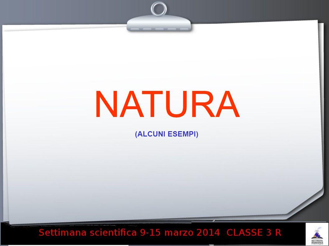 NATURA (ALCUNI ESEMPI)