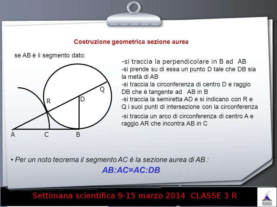Costruzione geometrica sezione aurea se AB è il segmento dato: -si traccia la perpendicolare in B ad AB -si prende su di essa un punto D tale che DB s