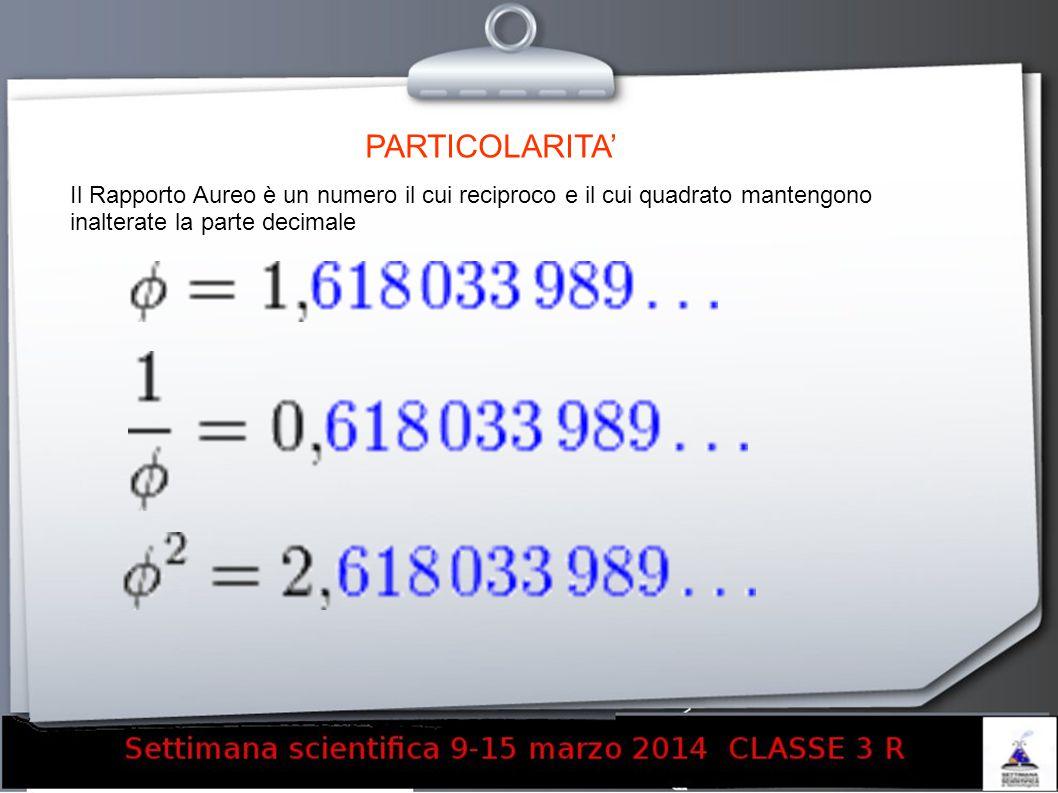 PARTICOLARITA' Il Rapporto Aureo è un numero il cui reciproco e il cui quadrato mantengono inalterate la parte decimale