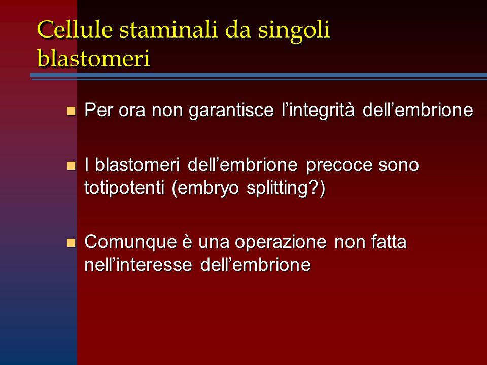 Cellule staminali da singoli blastomeri n Per ora non garantisce l'integrità dell'embrione n I blastomeri dell'embrione precoce sono totipotenti (embryo splitting?) n Comunque è una operazione non fatta nell'interesse dell'embrione