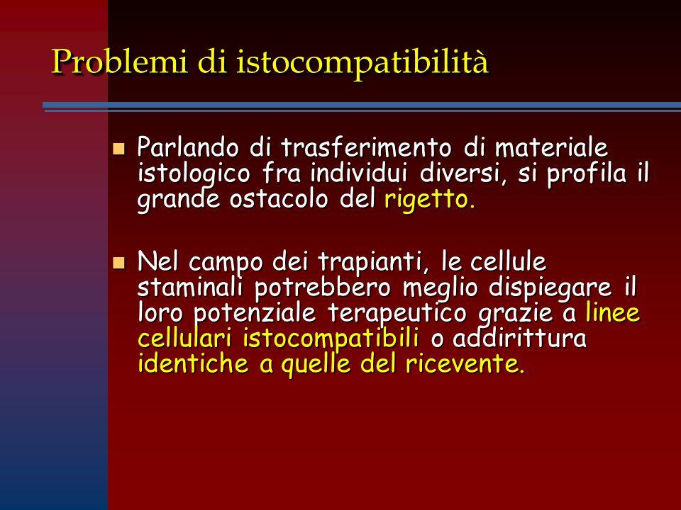 Problemi di istocompatibilità n Parlando di trasferimento di materiale istologico fra individui diversi, si profila il grande ostacolo del rigetto.
