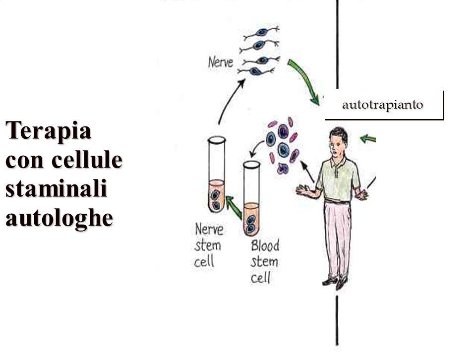 Terapia con cellule staminaliautologhe..