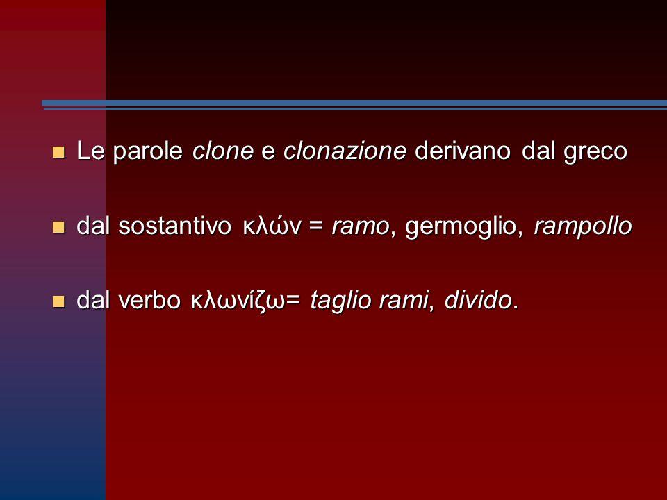 n Le parole clone e clonazione derivano dal greco n dal sostantivo κλών = ramo, germoglio, rampollo n dal verbo κλωνίζω= taglio rami, divido.