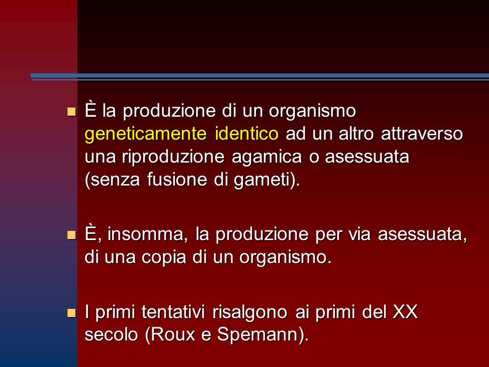 n È la produzione di un organismo geneticamente identico ad un altro attraverso una riproduzione agamica o asessuata (senza fusione di gameti).