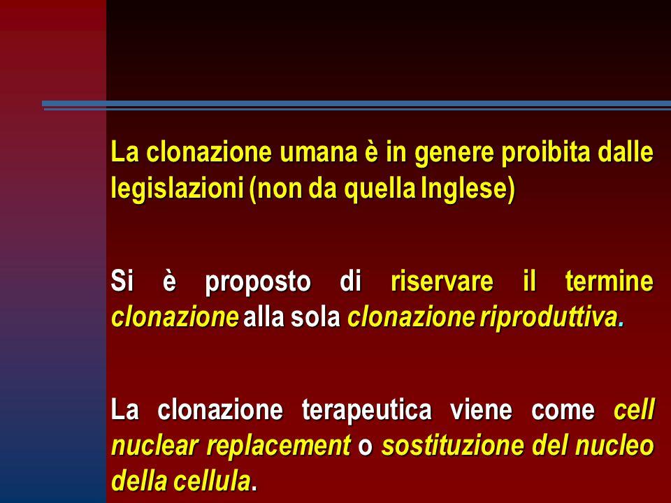 La clonazione umana è in genere proibita dalle legislazioni (non da quella Inglese) Si è proposto di riservare il termine clonazione alla sola clonazione riproduttiva.