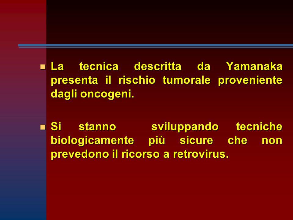 n La tecnica descritta da Yamanaka presenta il rischio tumorale proveniente dagli oncogeni.