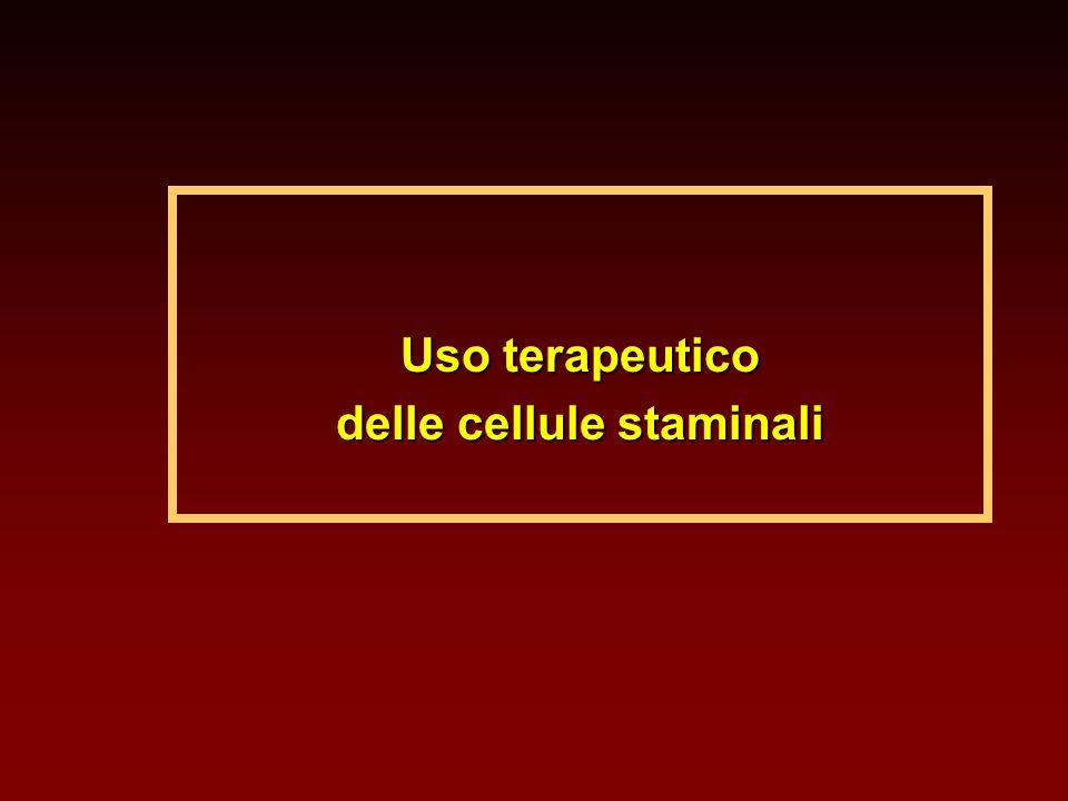 Uso terapeutico delle cellule staminali