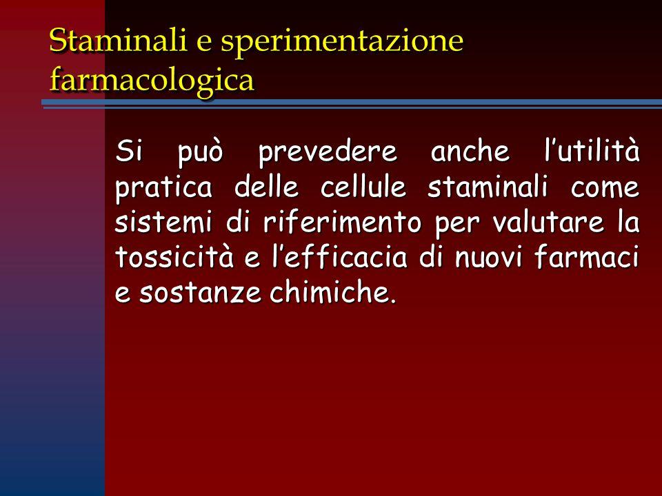 Staminali e sperimentazione farmacologica Si può prevedere anche l'utilità pratica delle cellule staminali come sistemi di riferimento per valutare la tossicità e l'efficacia di nuovi farmaci e sostanze chimiche.
