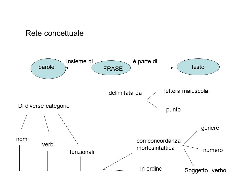 Rete concettuale parole Di diverse categorie nomi verbi funzionali FRASE Insieme diè parte di testo delimitata da lettera maiuscola punto con concorda