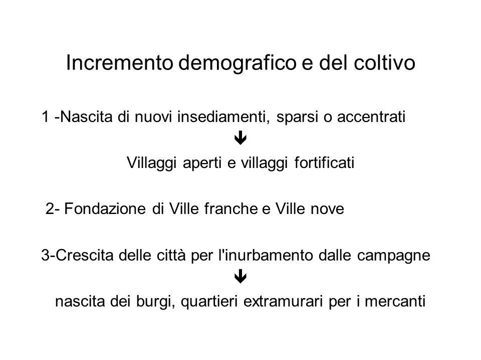 Incremento demografico e del coltivo 1 -Nascita di nuovi insediamenti, sparsi o accentrati  Villaggi aperti e villaggi fortificati 2- Fondazione di V