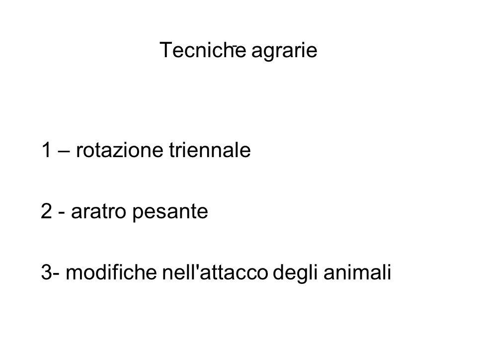 Tecniche agrarie 1 – rotazione triennale 2 - aratro pesante 3- modifiche nell'attacco degli animali -