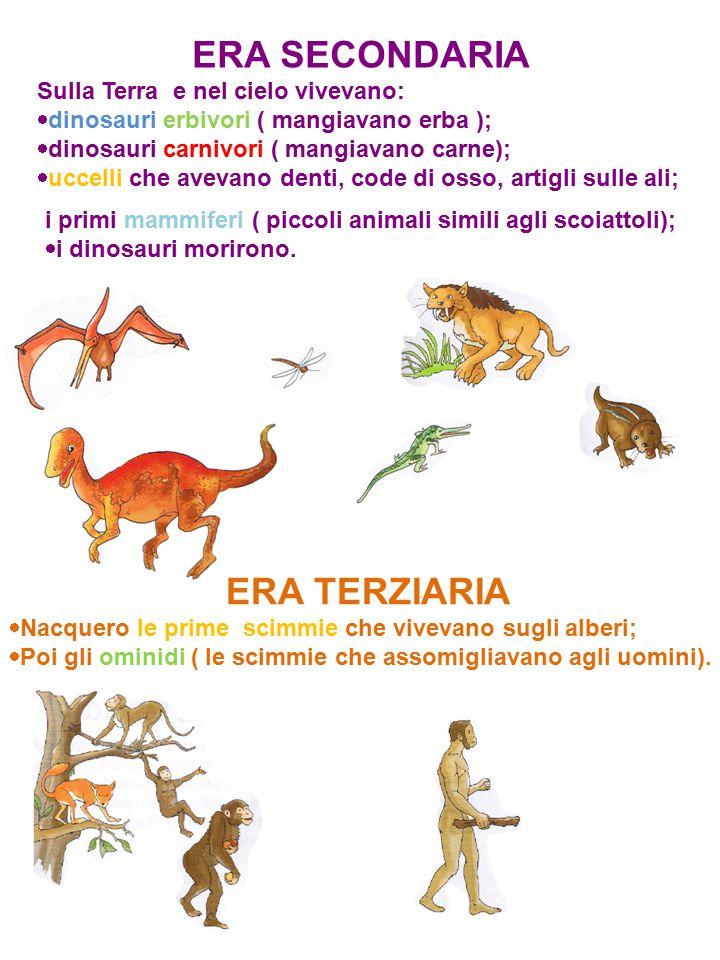 ERA SECONDARIA Sulla Terra e nel cielo vivevano:  dinosauri erbivori ( mangiavano erba );  dinosauri carnivori ( mangiavano carne);  uccelli che av