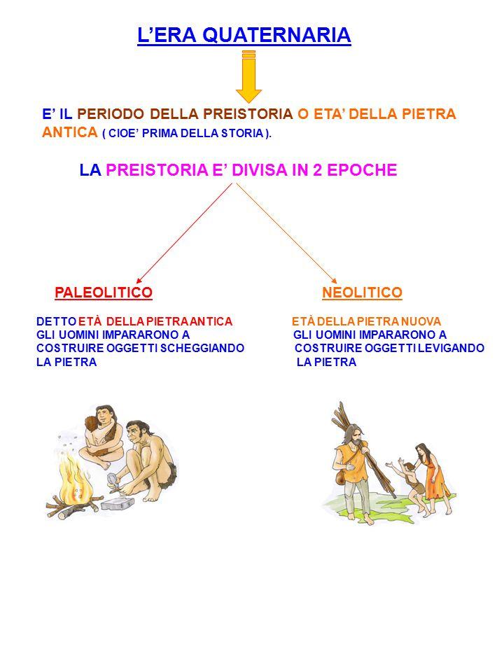 I PRIMI AGRICOLTORI I GRANDI ANIMALI NON C'ERANO PIÙ.