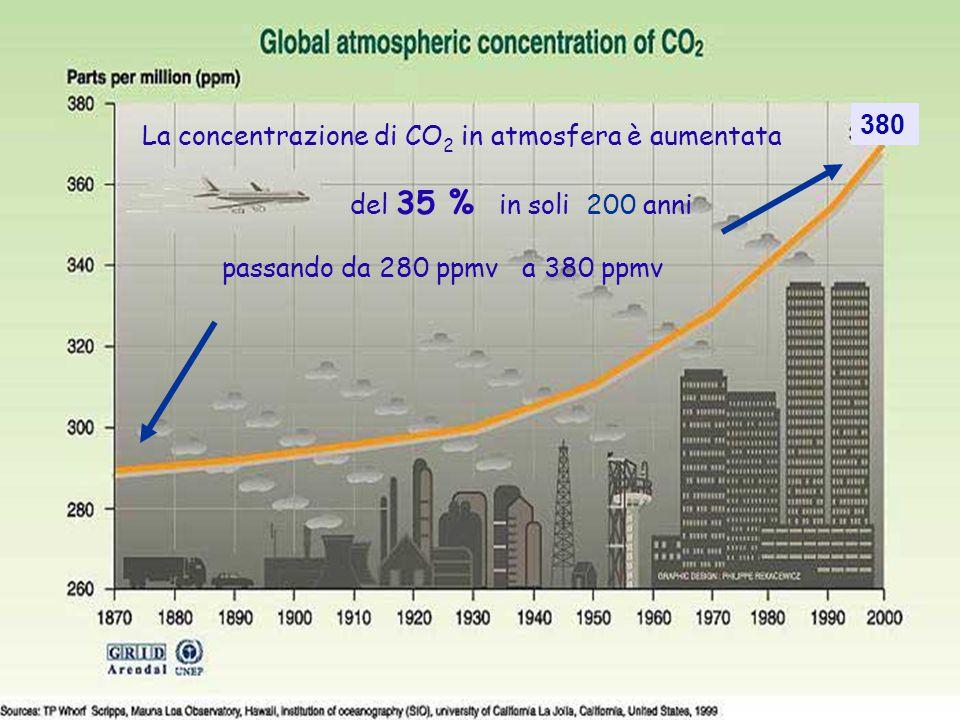 18progetto ENEA - Educarsi al futuro La concentrazione di CO 2 in atmosfera è aumentata del 35 % in soli 200 anni passando da 280 ppmv a 380 ppmv 380