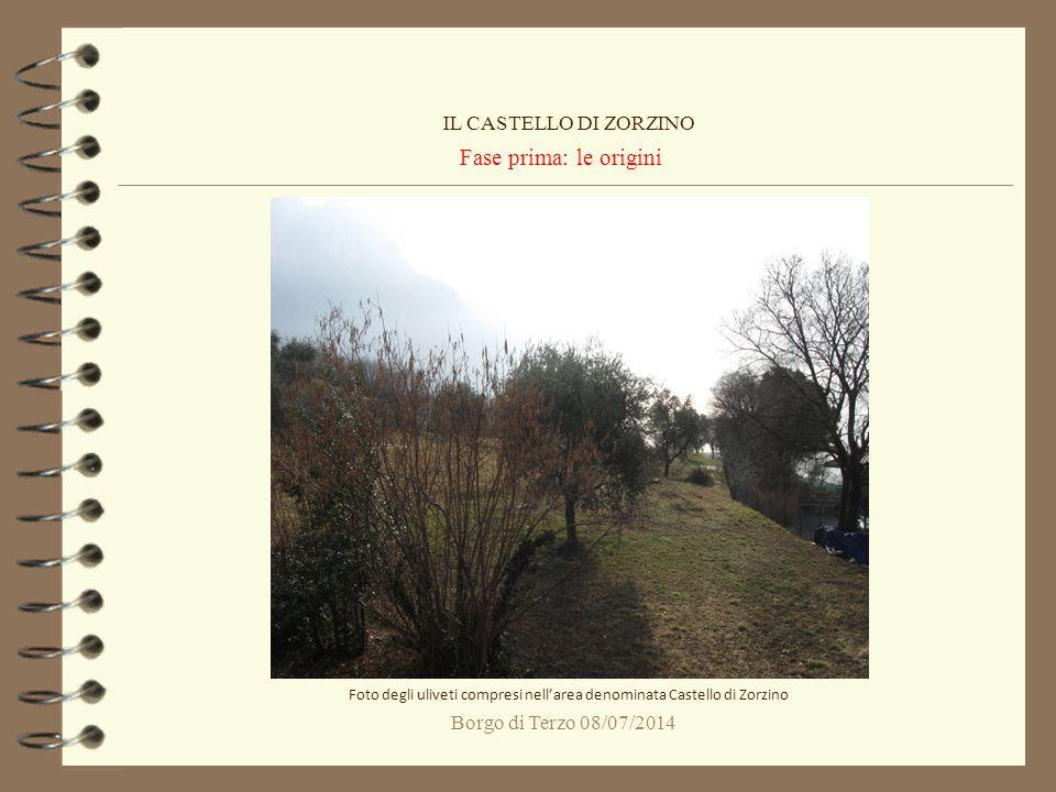 Borgo di Terzo 08/07/2014 Fase prima: le origini IL CASTELLO DI ZORZINO Foto degli uliveti compresi nell'area denominata Castello di Zorzino