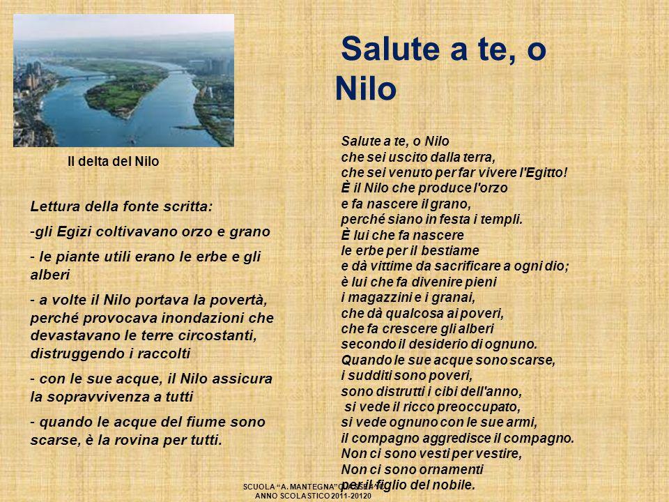 Il delta del Nilo Lettura della fonte scritta: -gli Egizi coltivavano orzo e grano - le piante utili erano le erbe e gli alberi - a volte il Nilo port