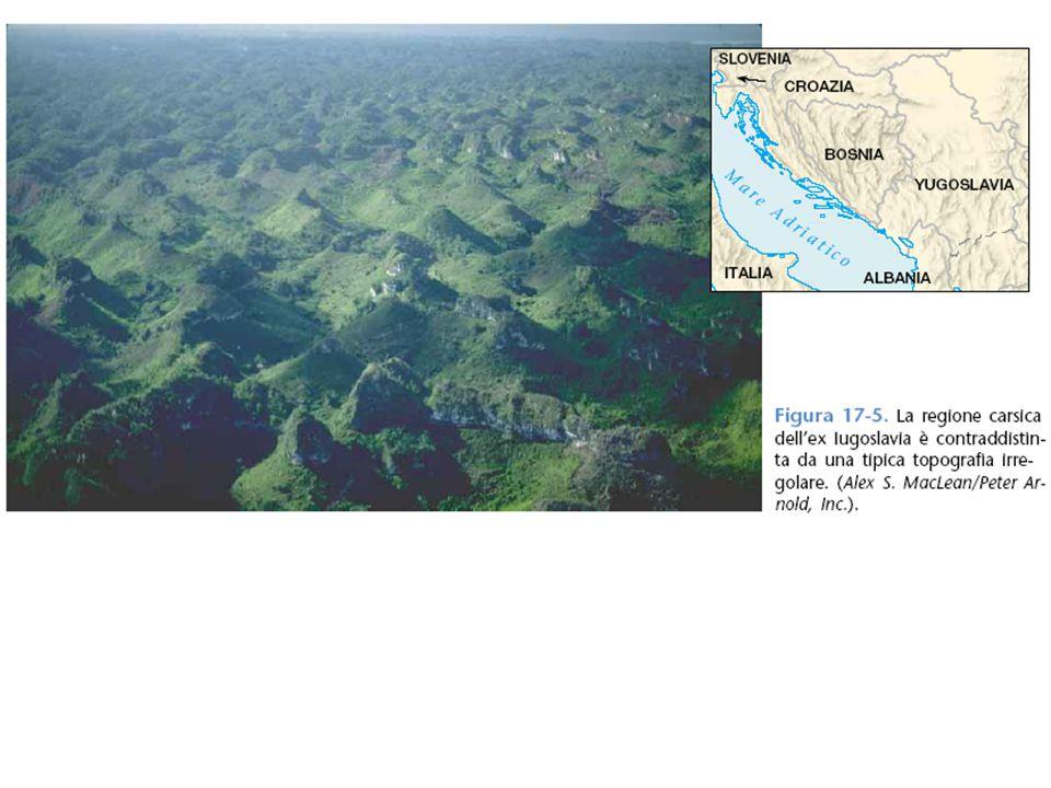 3 L'altopiano del carso. Quest'area in superficie mostra la spettacolarità del fenomeno delle doline e la singolarità di questa forma dell'erosione ch