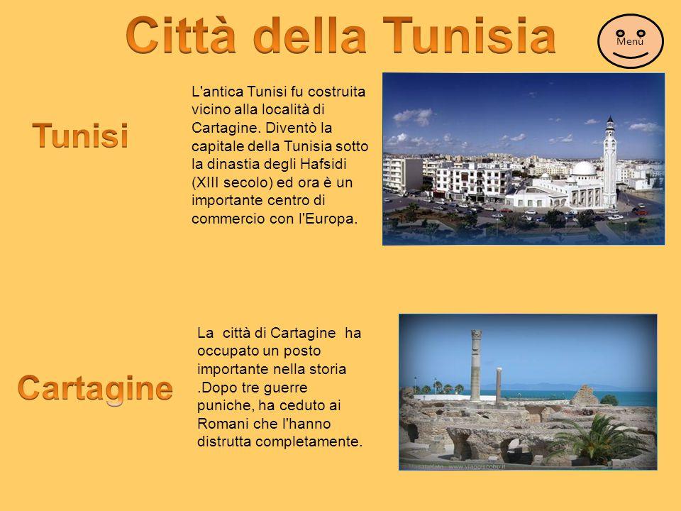 L'antica Tunisi fu costruita vicino alla località di Cartagine. Diventò la capitale della Tunisia sotto la dinastia degli Hafsidi (XIII secolo) ed ora