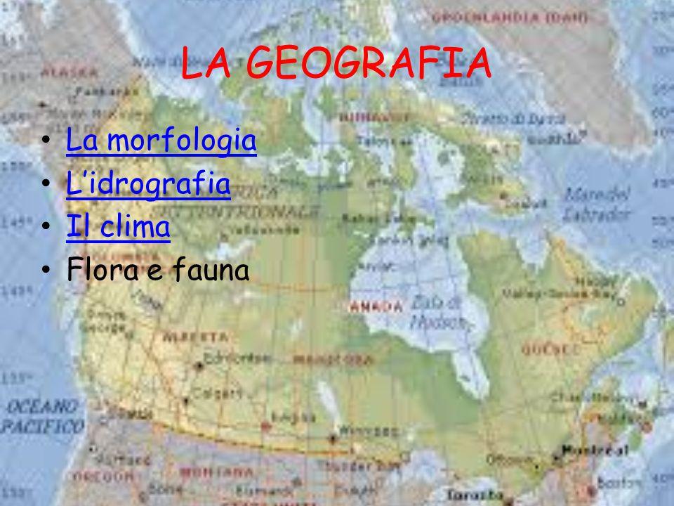 LA GEOGRAFIA La morfologia L'idrografia Il clima Flora e fauna
