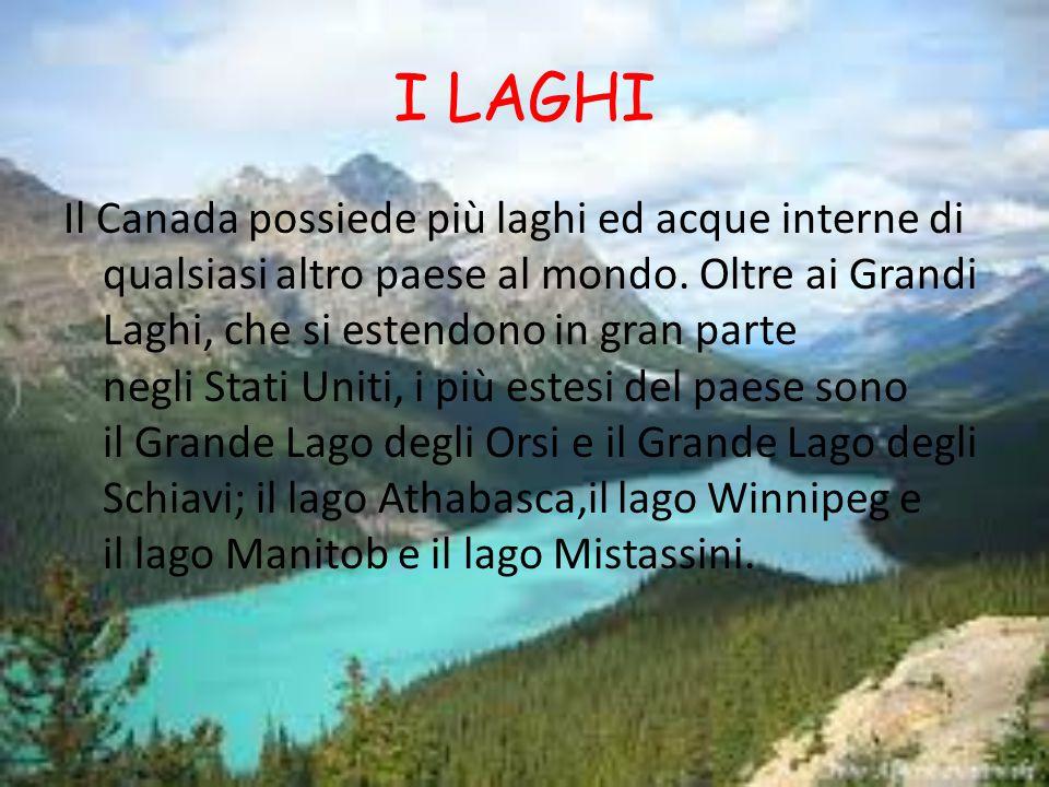 I LAGHI Il Canada possiede più laghi ed acque interne di qualsiasi altro paese al mondo.