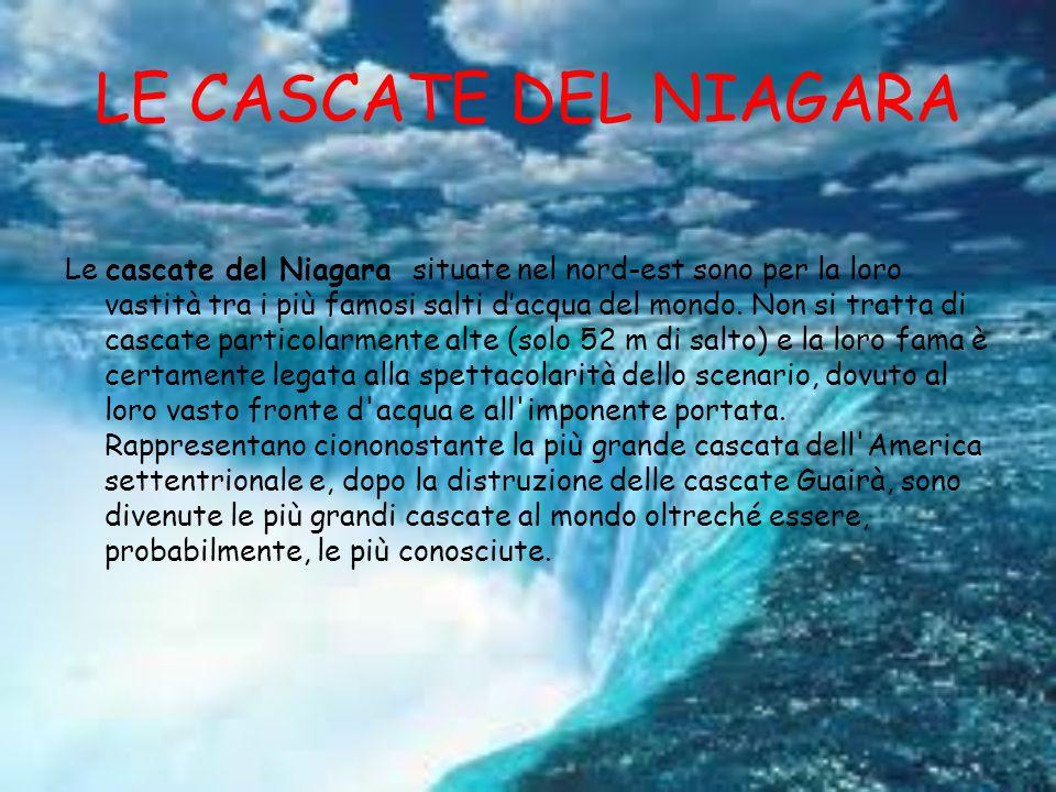 LE CASCATE DEL NIAGARA Le cascate del Niagara situate nel nord-est sono per la loro vastità tra i più famosi salti d'acqua del mondo.