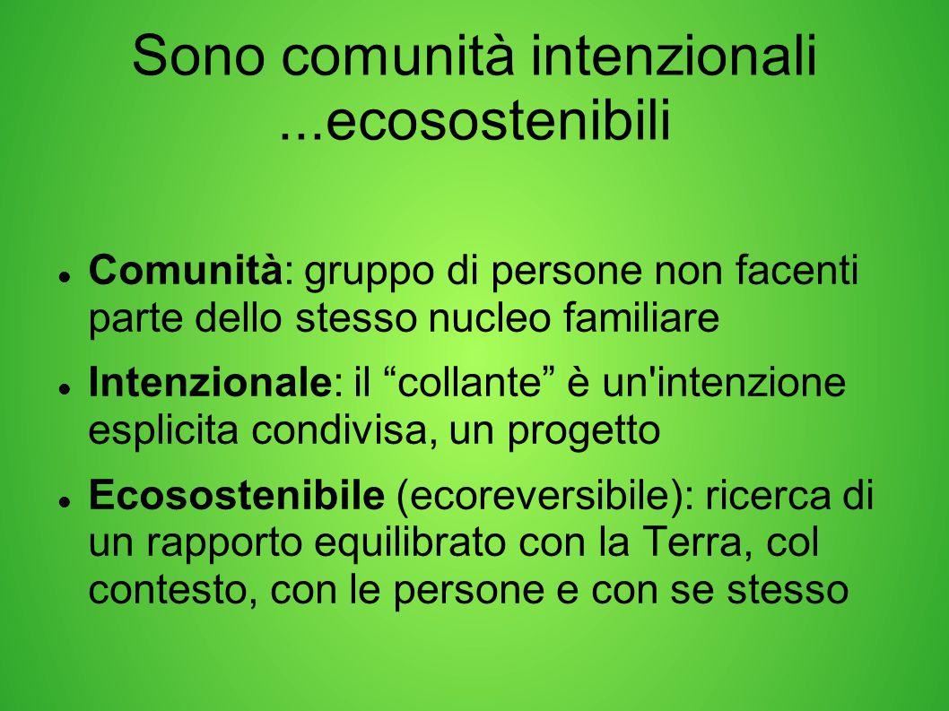 """Sono comunità intenzionali...ecosostenibili Comunità: gruppo di persone non facenti parte dello stesso nucleo familiare Intenzionale: il """"collante"""" è"""