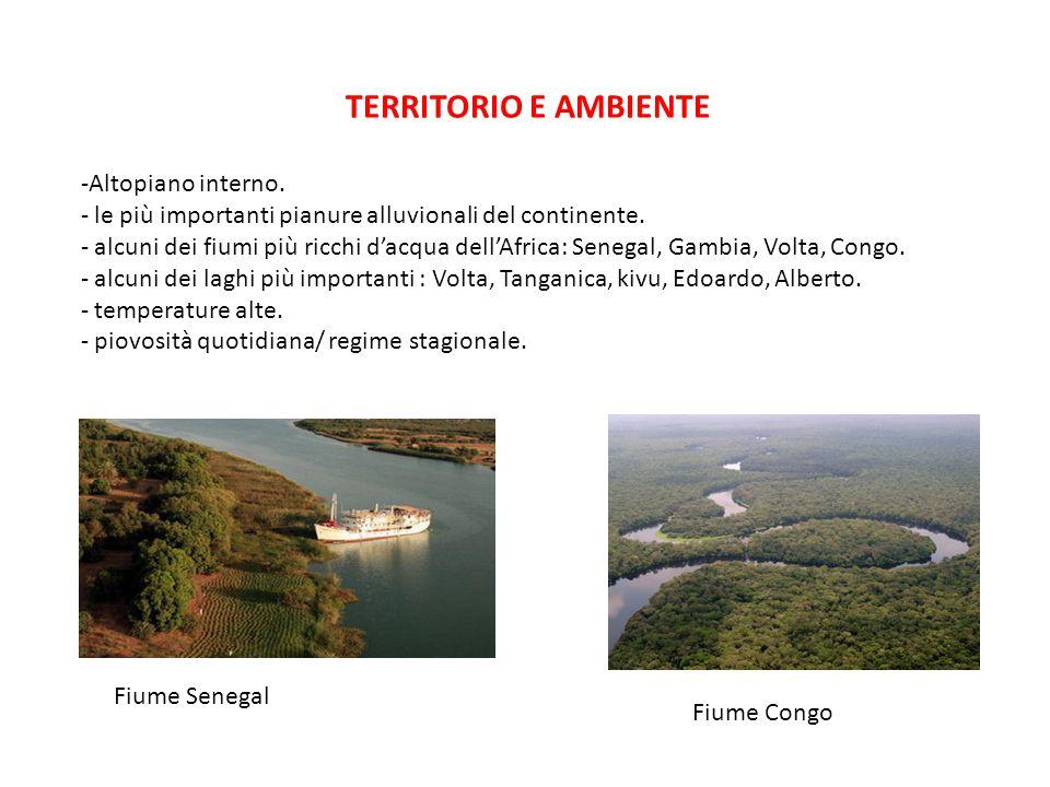 TERRITORIO E AMBIENTE -Altopiano interno. - le più importanti pianure alluvionali del continente. - alcuni dei fiumi più ricchi d'acqua dell'Africa: S