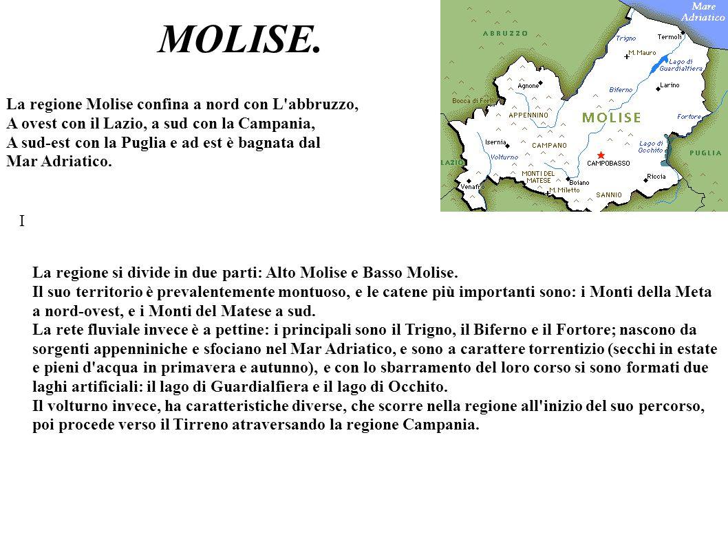 MOLISE. La regione Molise confina a nord con L'abbruzzo, A ovest con il Lazio, a sud con la Campania, A sud-est con la Puglia e ad est è bagnata dal M