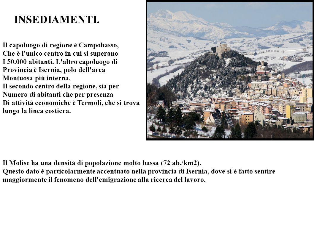 INSEDIAMENTI. Il capoluogo di regione è Campobasso, Che è l'unico centro in cui si superano I 50.000 abitanti. L'altro capoluogo di Provincia è Iserni
