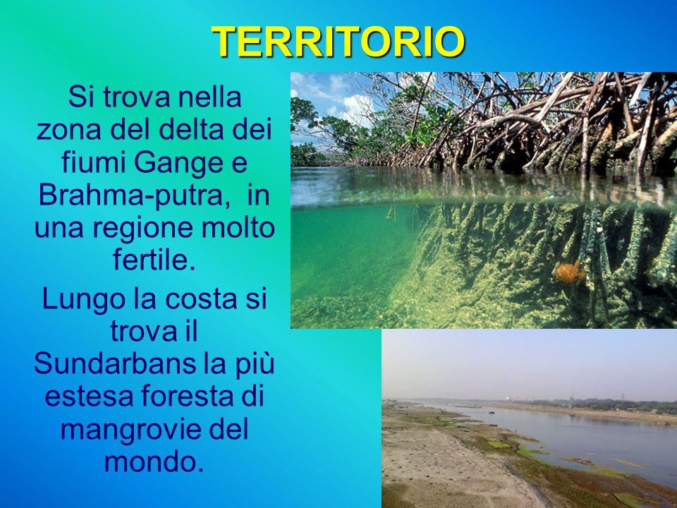 TERRITORIO Si trova nella zona del delta dei fiumi Gange e Brahma-putra, in una regione molto fertile. Lungo la costa si trova il Sundarbans la più es