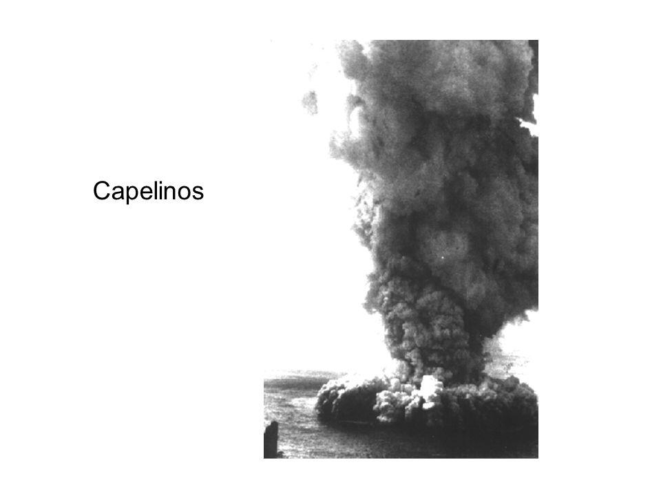 Capelinos