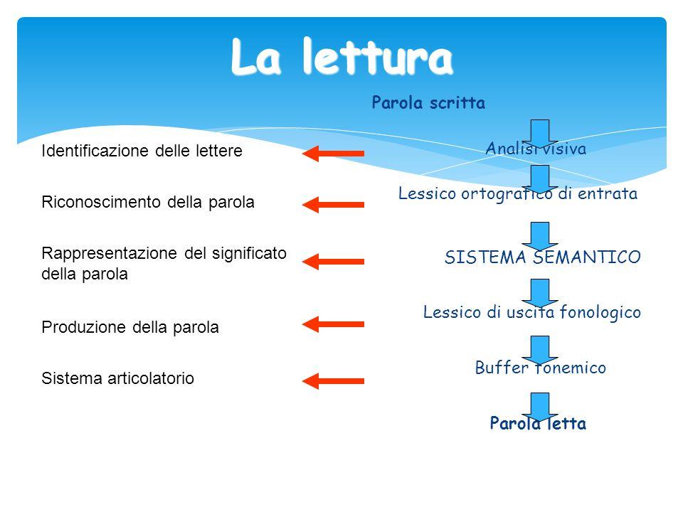 La lettura Parola scritta Analisi visiva Lessico ortografico di entrata SISTEMA SEMANTICO Lessico di uscita fonologico Buffer fonemico Parola letta Id