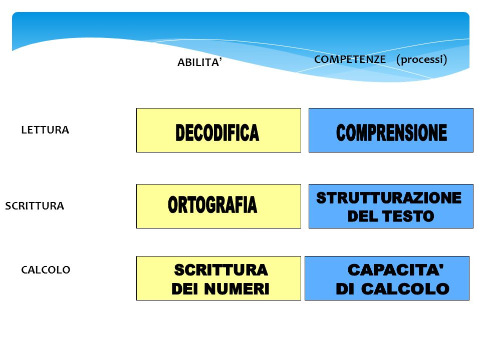 ABILITA ' COMPETENZE (processi) LETTURA SCRITTURA CALCOLO